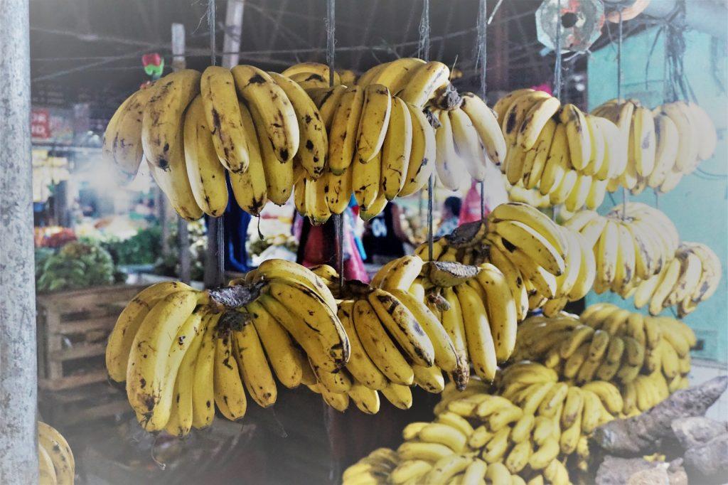 Reife Bananen am Marktstand auf Bohol