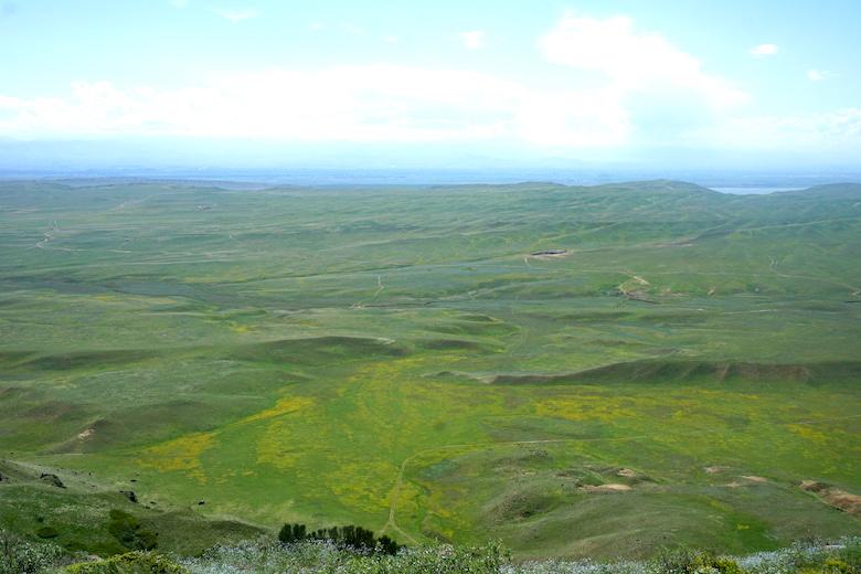 Blick von Georgien nach Aserbaidschan