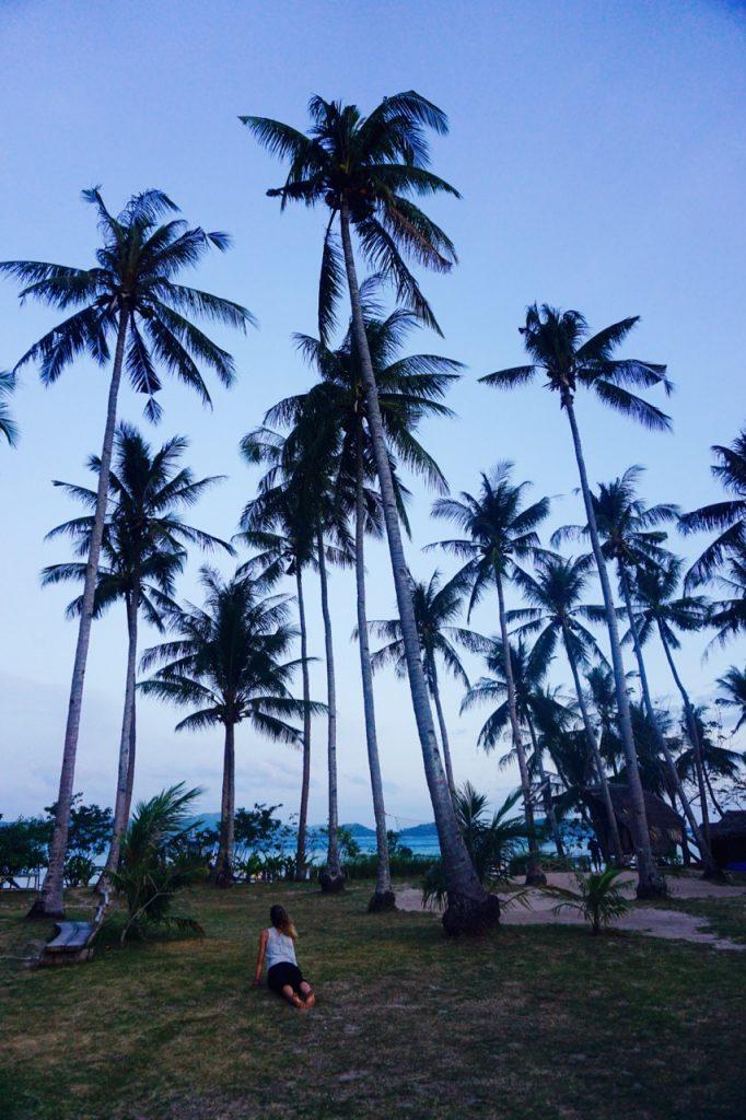 Frühes Morgenyoga unter Palmen