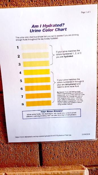 Ausreichend hydriert? Urin-Farbskala im Outback